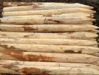 Kastanje houten paal met lengte 250cm