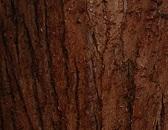 boomschorsmatten informatie